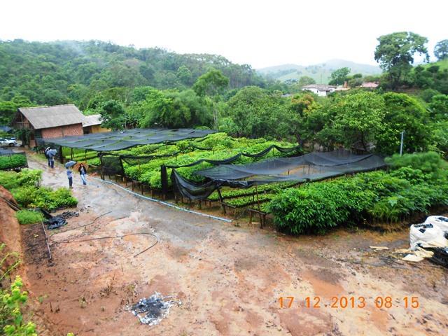 Viveiro C4 para a revegetação das áreas degradadas e áreas do entorno dos reservatórios